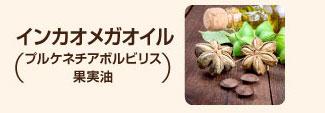 インカオメガオイル(プルケネチアボルビリス種子油)
