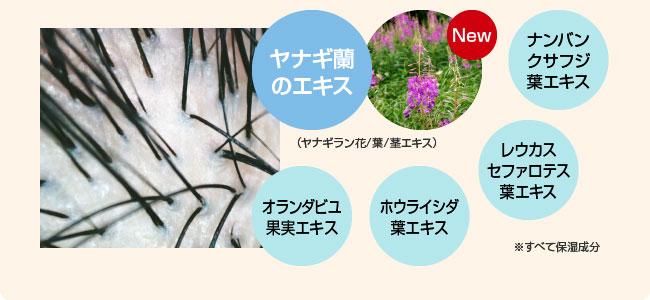 厳選した5種類の植物由来のスカルプケア成分