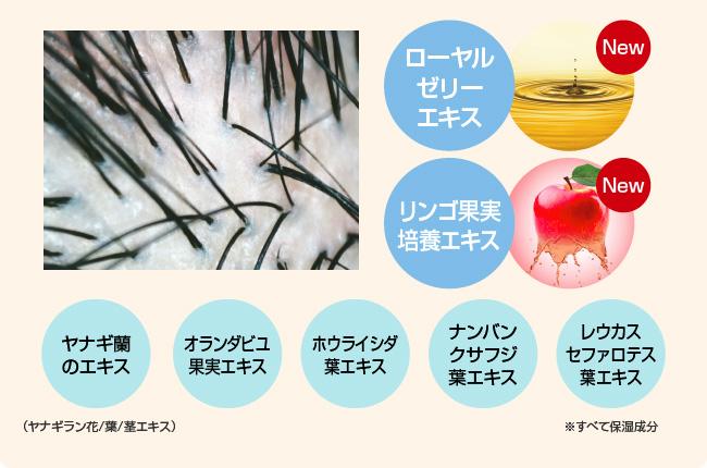 厳選した7種類の植物由来のスカルプケア成分