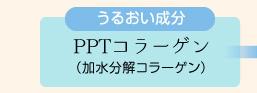 うるおい成分:PPTコラーゲン(加水分解コラーゲン)